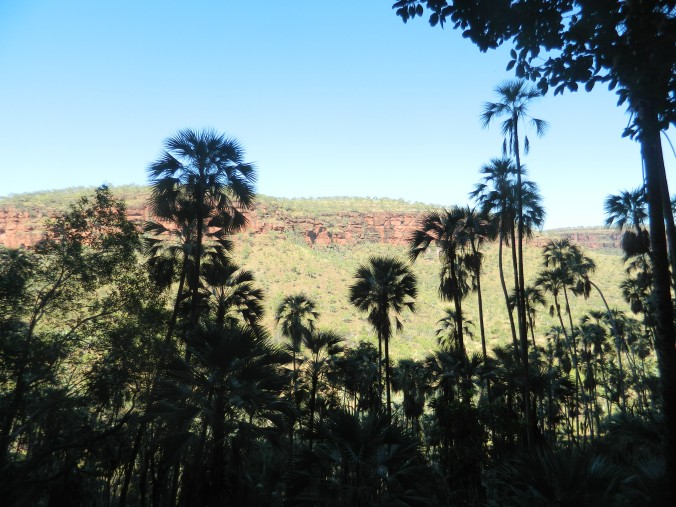 broome to cairns 098